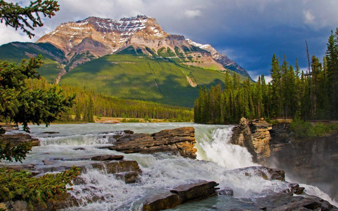 Scoprire il Canada selvaggio