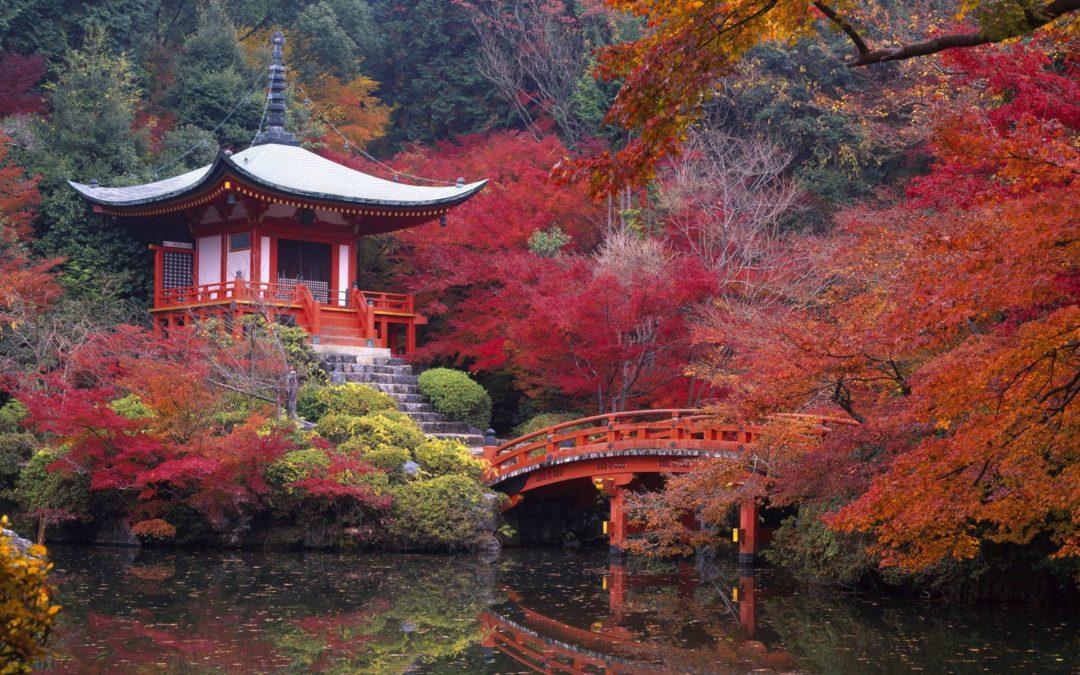 Giappone Imperiale, un viaggio nel futuro o nel passato?